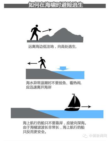 遇到海啸如何逃生